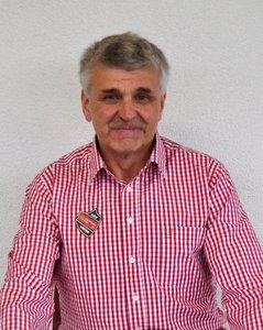 Ludwig Falkensteiner